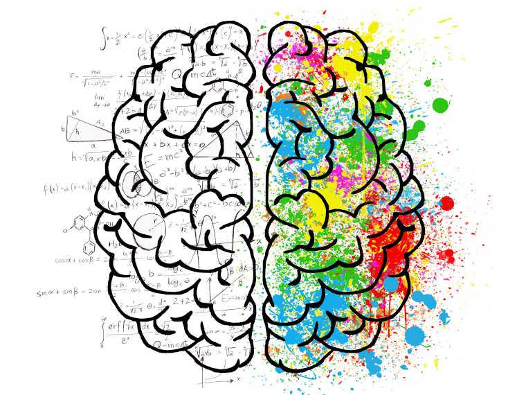 Gehirn bei Legasthenie und Dyskalkulie